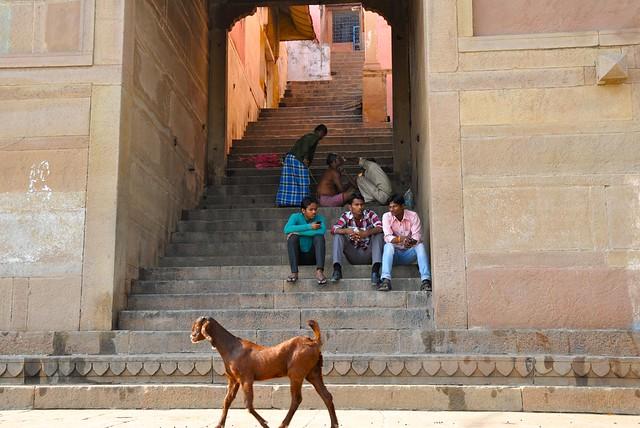 India- Uttar Pradesh- Varanasi