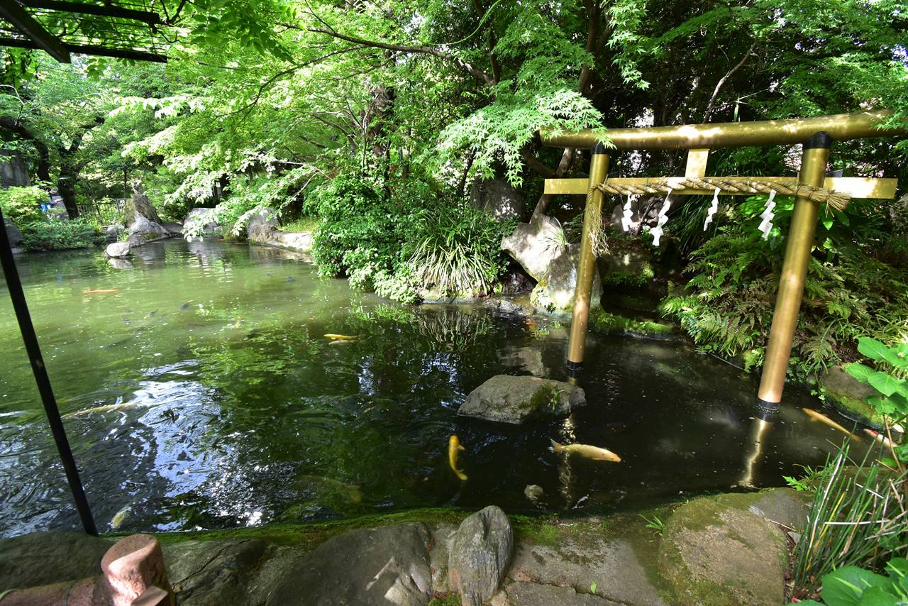 東京・愛宕神社の池