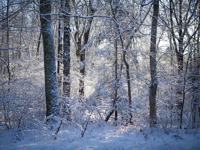 December in Connecticut