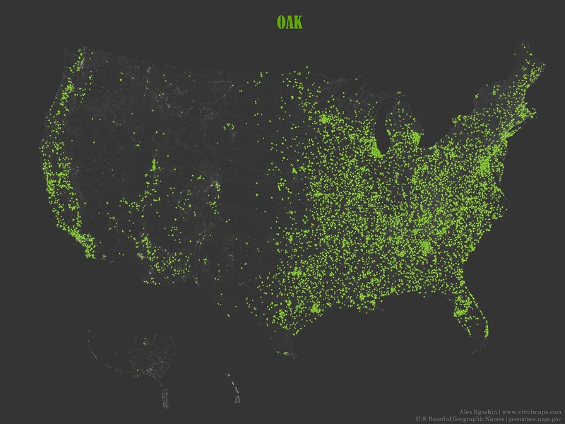 Oak - Toponymic Map
