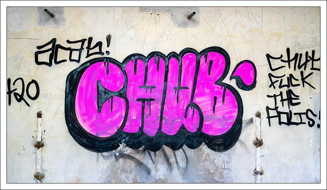 Chub #2