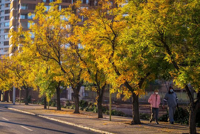 Las Condes   Santiago de Chile