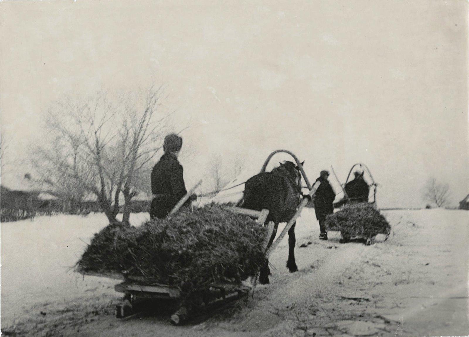 1941.Сельское хозяйство в годы войны