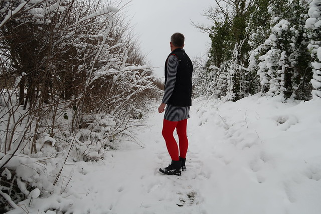 Red ribbed opaque tights