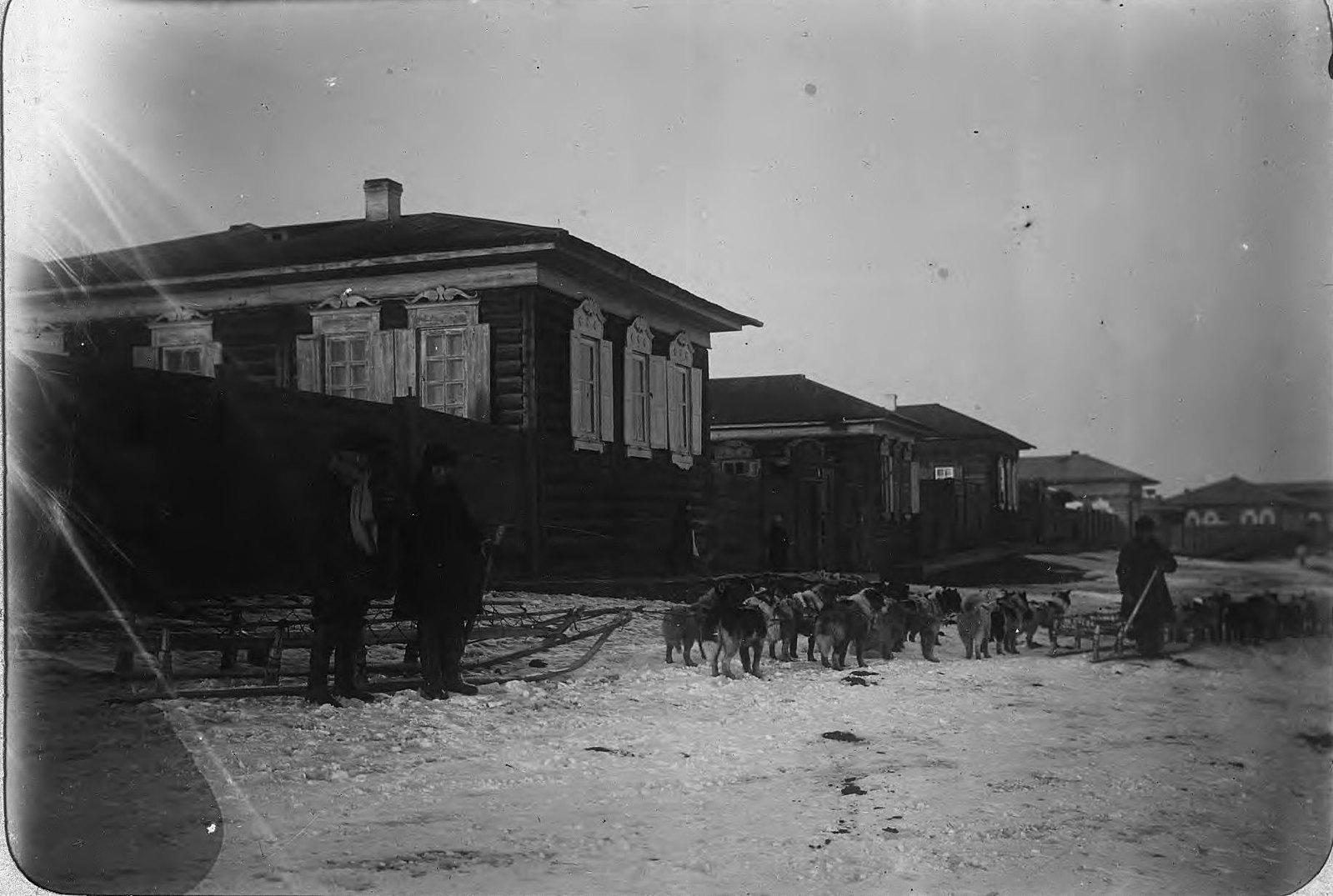 Собачьи упряжки на улицах Якутска