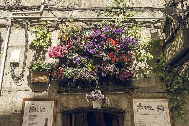 Madrid floral