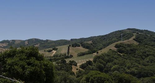 petalumacalifornia backroads scenic landscapes ruralcalifornia sonomacounty countryside