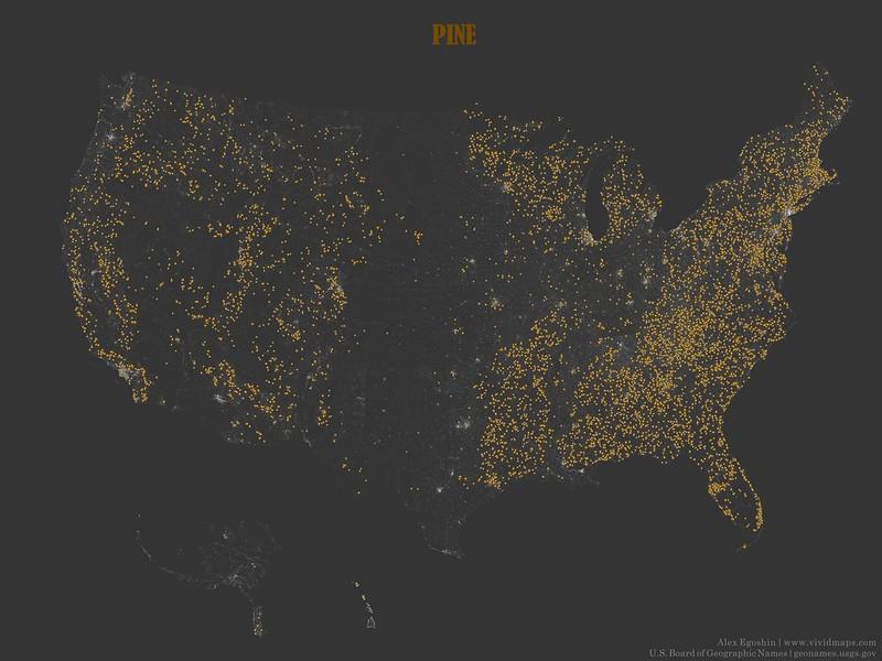 Pine - Toponymic Map