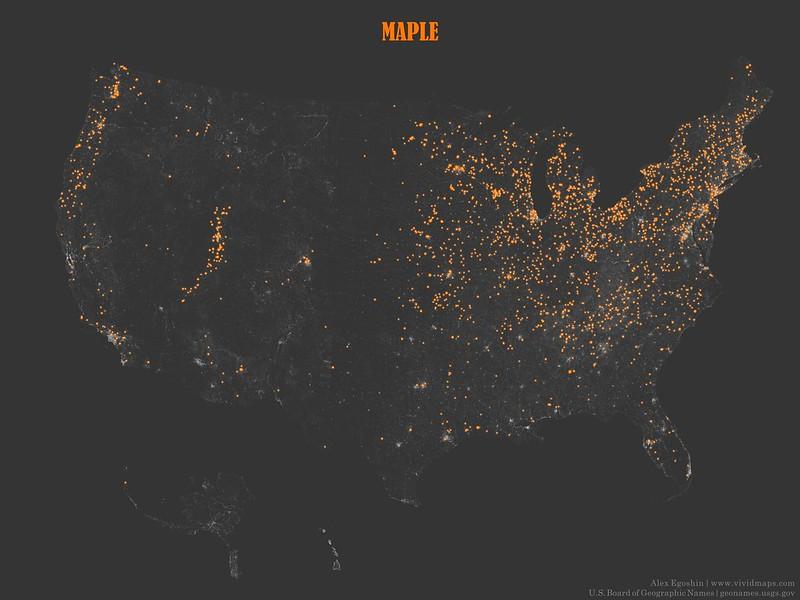 Maple - Toponymic Map