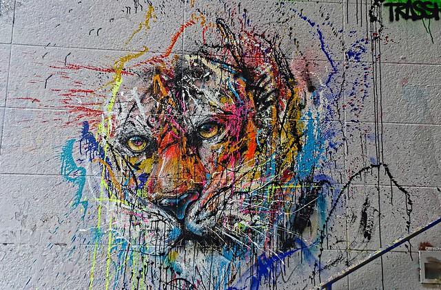 Les yeux du tigre
