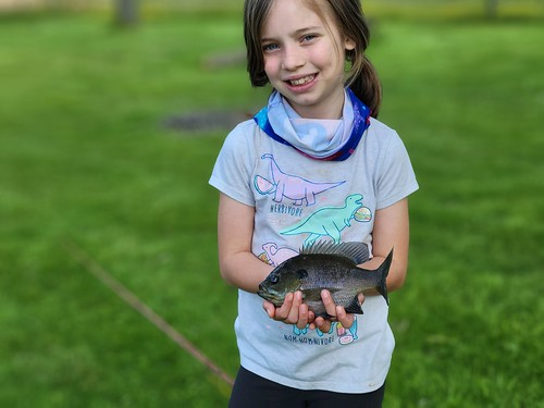 Photo of girl holding a bluegill fish