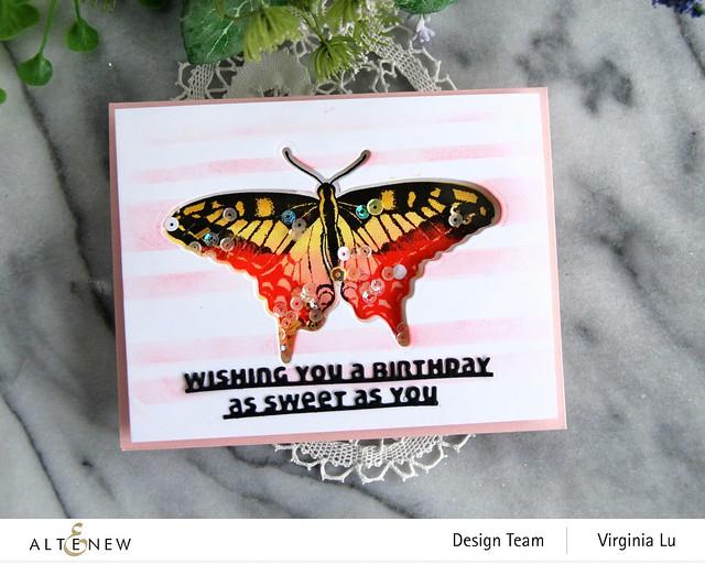 06032021-Dovetail Butterflies Stamp & Die Bundle -Slim Sentiments Die Set -Stripe Builder Stencil -003
