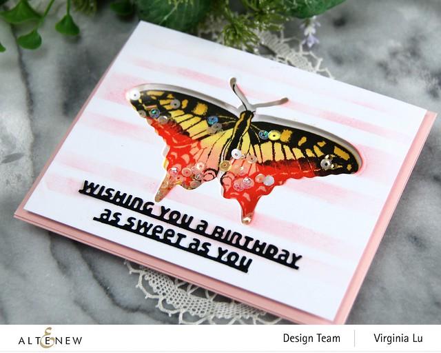 06032021-Dovetail Butterflies Stamp & Die Bundle -Slim Sentiments Die Set -Stripe Builder Stencil -002