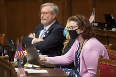 State Rep. Cindy Harrison reads legislation during a session day on May 27th.
