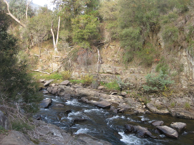 The Ovens River - Bright Canyon Walk