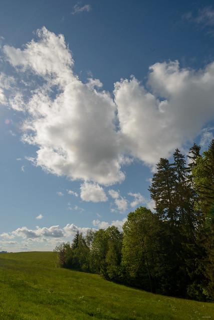 rasch verändern sich die Wolken