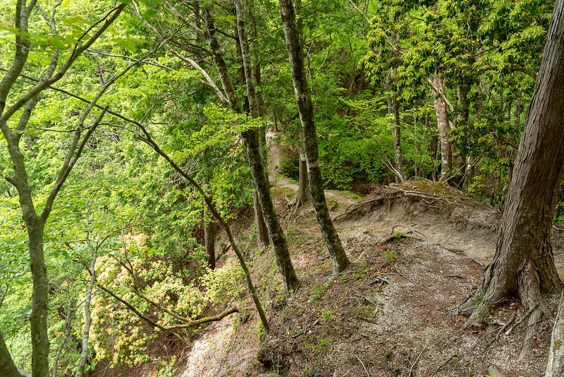 畦ヶ丸の登山道