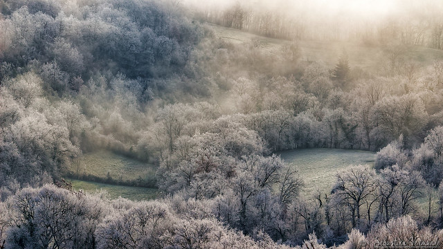 Morning frosts - Gelées matinales