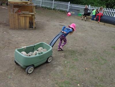 hauling rocks