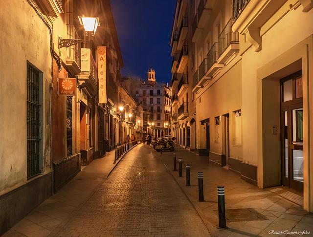 Lampposts on any street - Farolas en una calle cualquiera