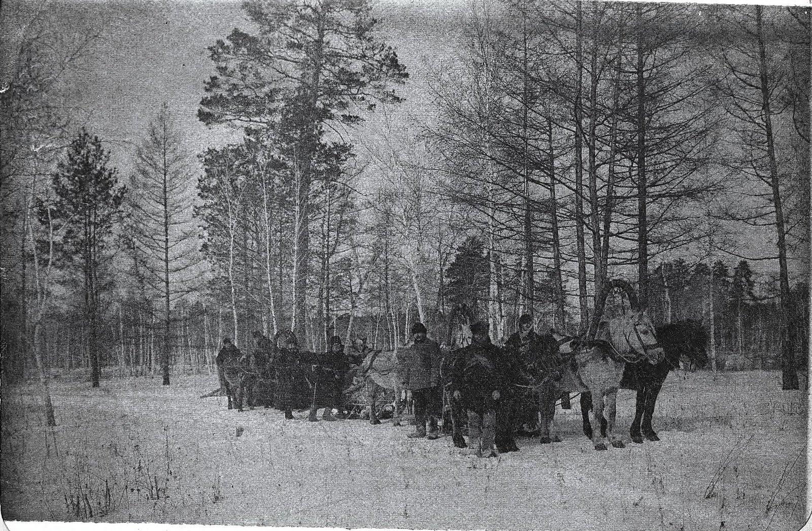 Обоз в зимнем лесу.