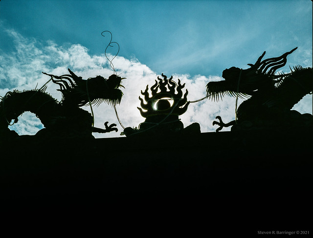 dragons againist the afternoon sky