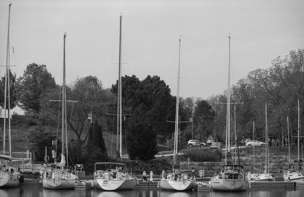 Sail Boats on the West Side of 16 Mile Creek