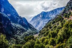 Monte LIBANO