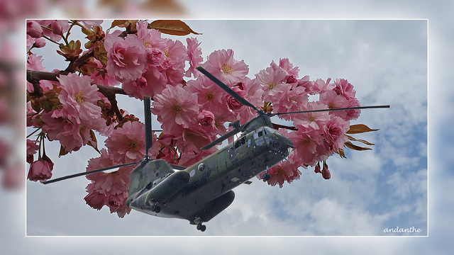 4 Flowercopter