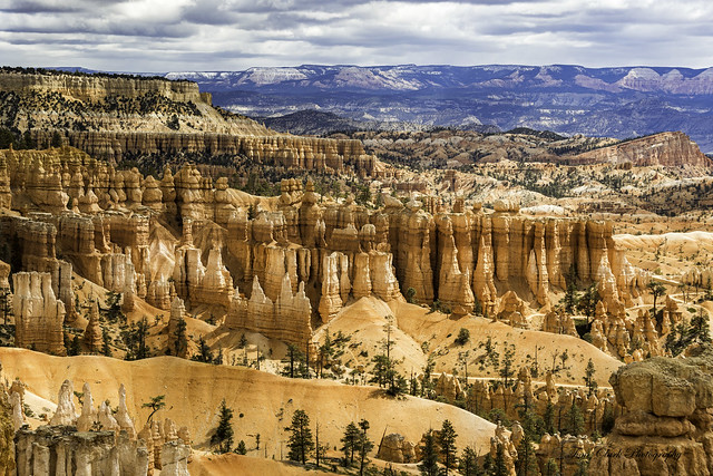 looking east from Sunset Point and Navajo Loop in Bryce Canyon NP