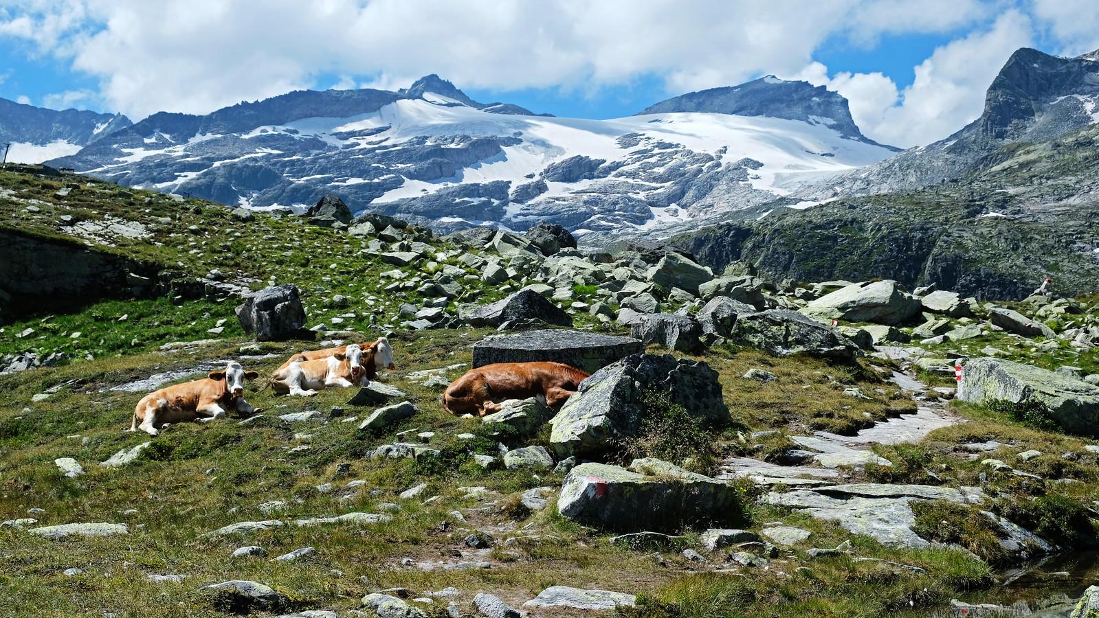 Weisssee Glacier World, Austria