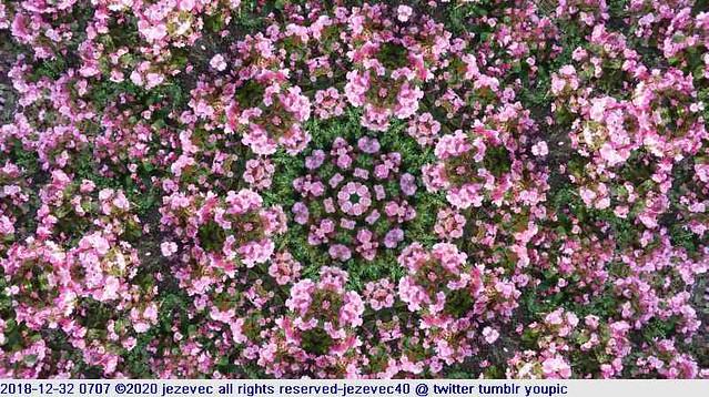 2018-12-32 0707 purple abstract art