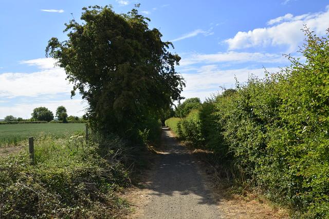 Chevet Branch Line (117)