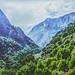 IMGP5684 Monte LIBANO
