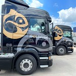 Gold Fish Transport & Consultancy Limited