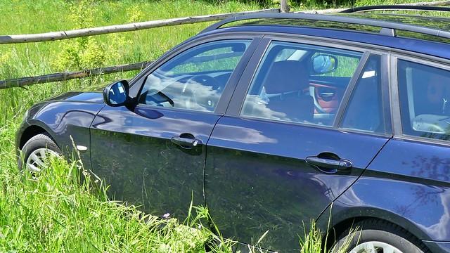 Gras im Auto eingeschlossen