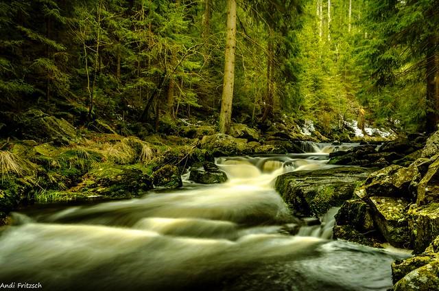 Im Schwarzwassertal