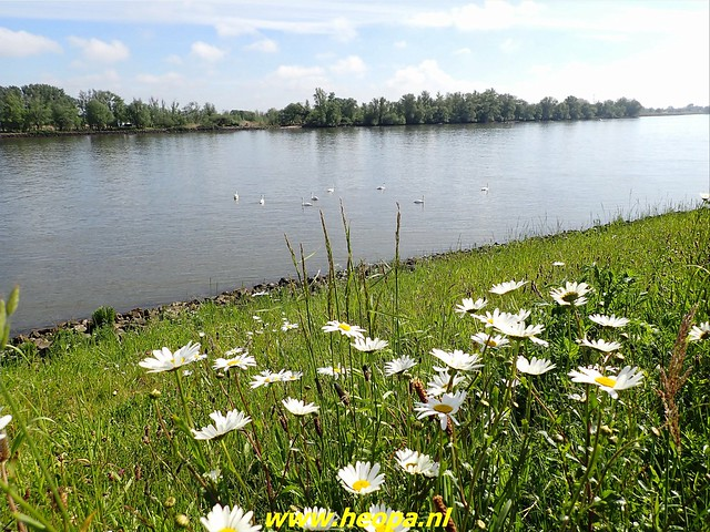 2021-05-28       Alblasserdam      25 Km   (26)