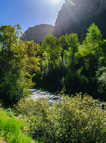 provo utah unitedstates sunburst trees sunrise river mountains