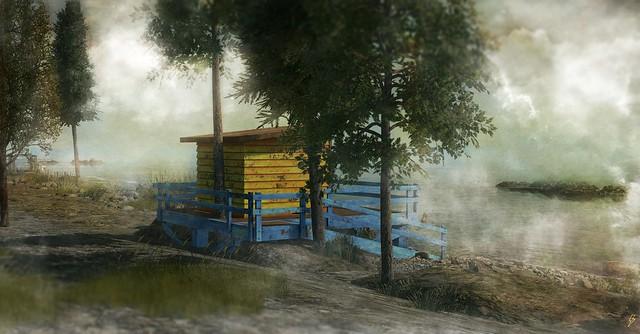 ⚡ in the fog.....