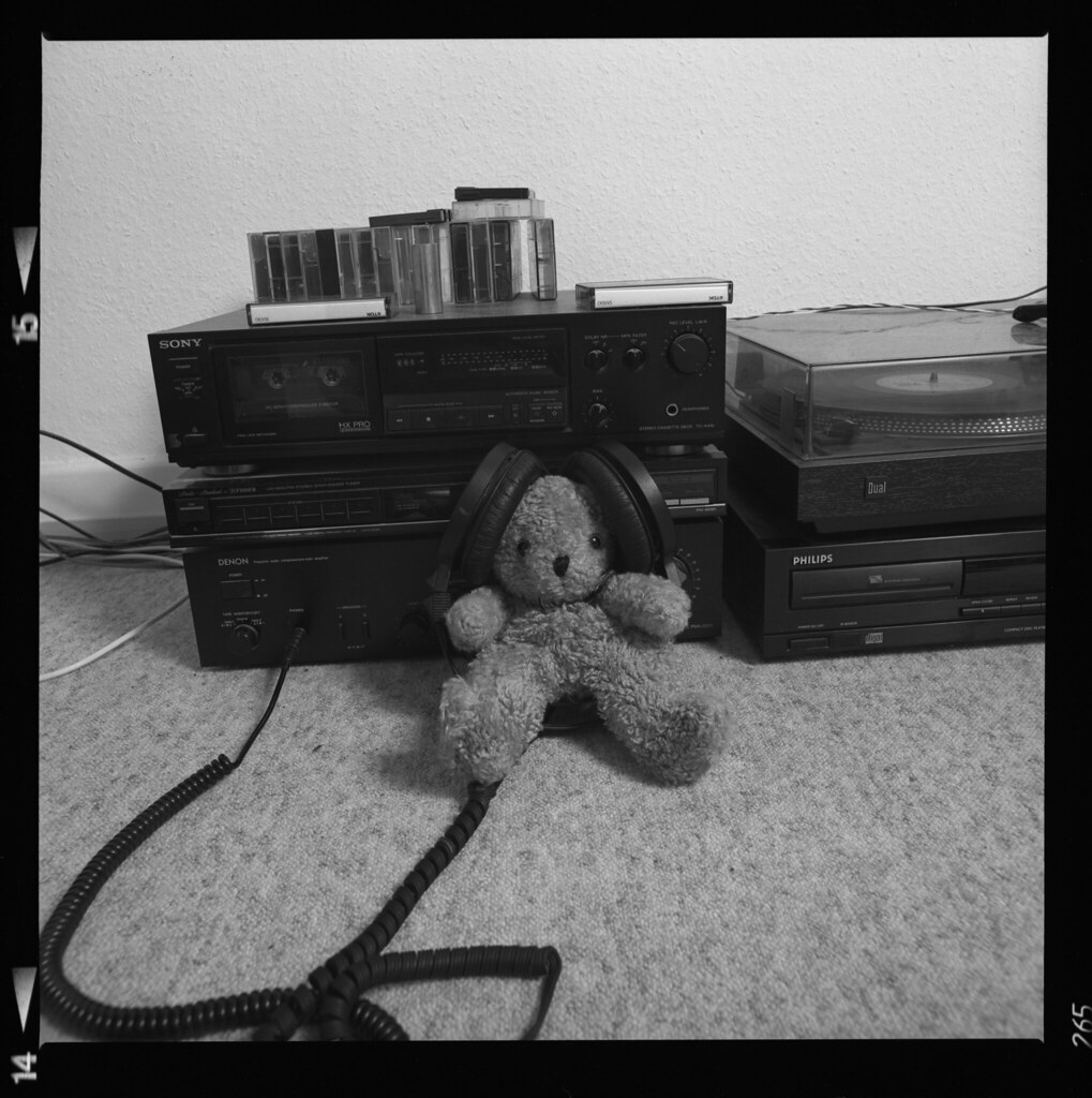 The bear growls to the music of Pink Floyd