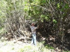 Travaux d'entretien sur la piste RG de la Sainte-Lucie