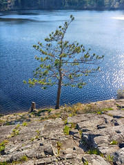 Blue Mountain-Birch Cove Lakes Wilderness Area