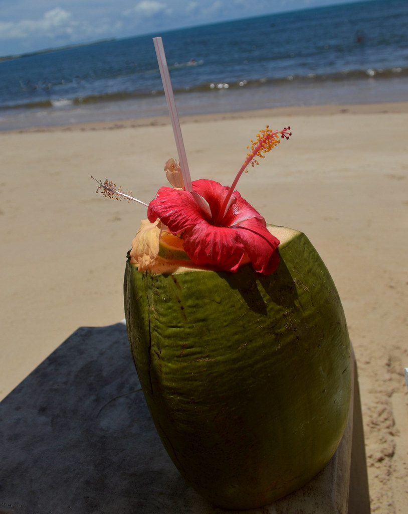 Coco verde com flor - Porto Seguro - Bahia