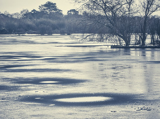 Winter Pond copy
