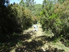 Travaux d'entretien sur la piste RG de la Sainte-Lucie avec l'équipe de tête