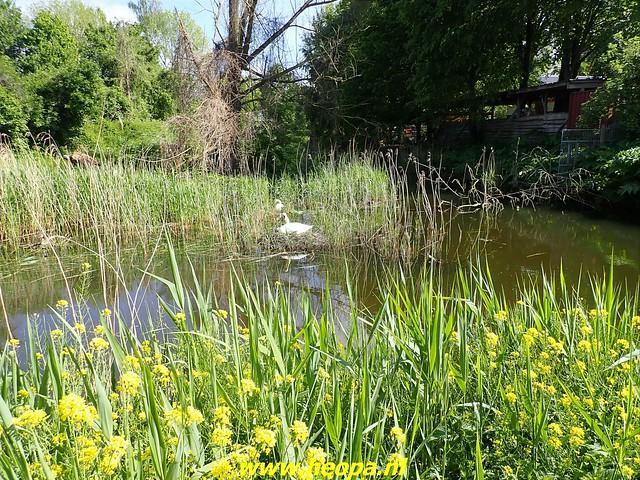 2021-05-29 Almere Tussen Hollandsebrug-Stichtsebrug en A6 26 Km (52)