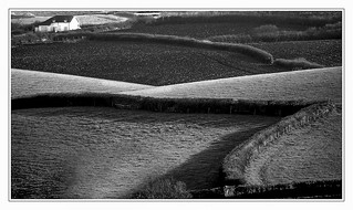 Fields and Cottage b&w