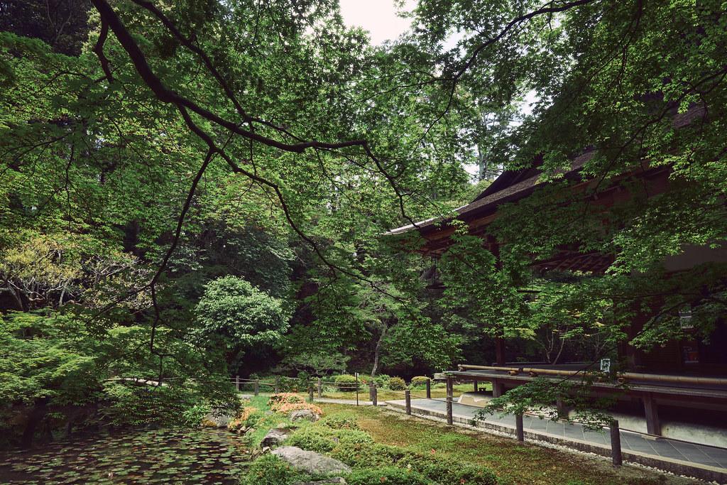 Kyoto Nanzenin Garden in Early Summer