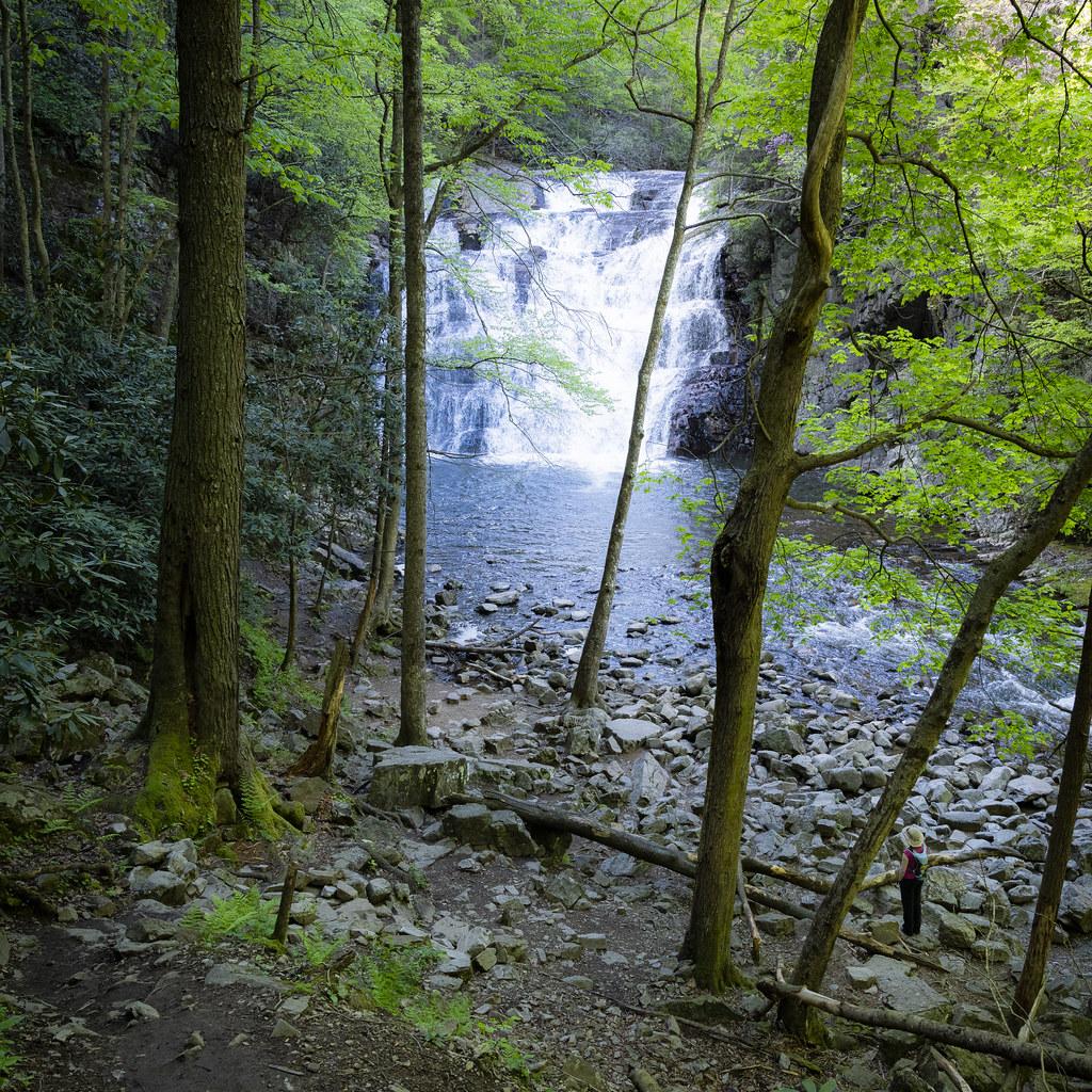 Contemplating Waterfall